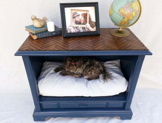 8 amazing tips to keep your dog happy healthy 3milliondogs for Amazing dog beds