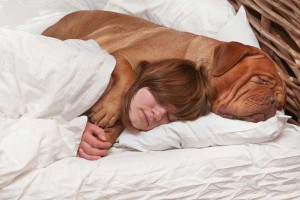 1.  Have you ever just wanted to be the little spoon?  Well, big dogs make great big spoons