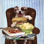 4. Eating Human Food: Lunch time? Eat before or after the park. Need a snack? You're going to have to wait. Bringing in human food is a big no-no as you can attract all the dogs and possibly cause a food possessive situation.