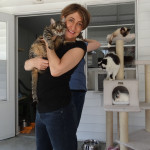 """I Have Cat - a blog that is """"A call to women like me to proudly proclaim. Yes, I HAVE CAT (s)!"""" - and some of them are blind, so what?"""