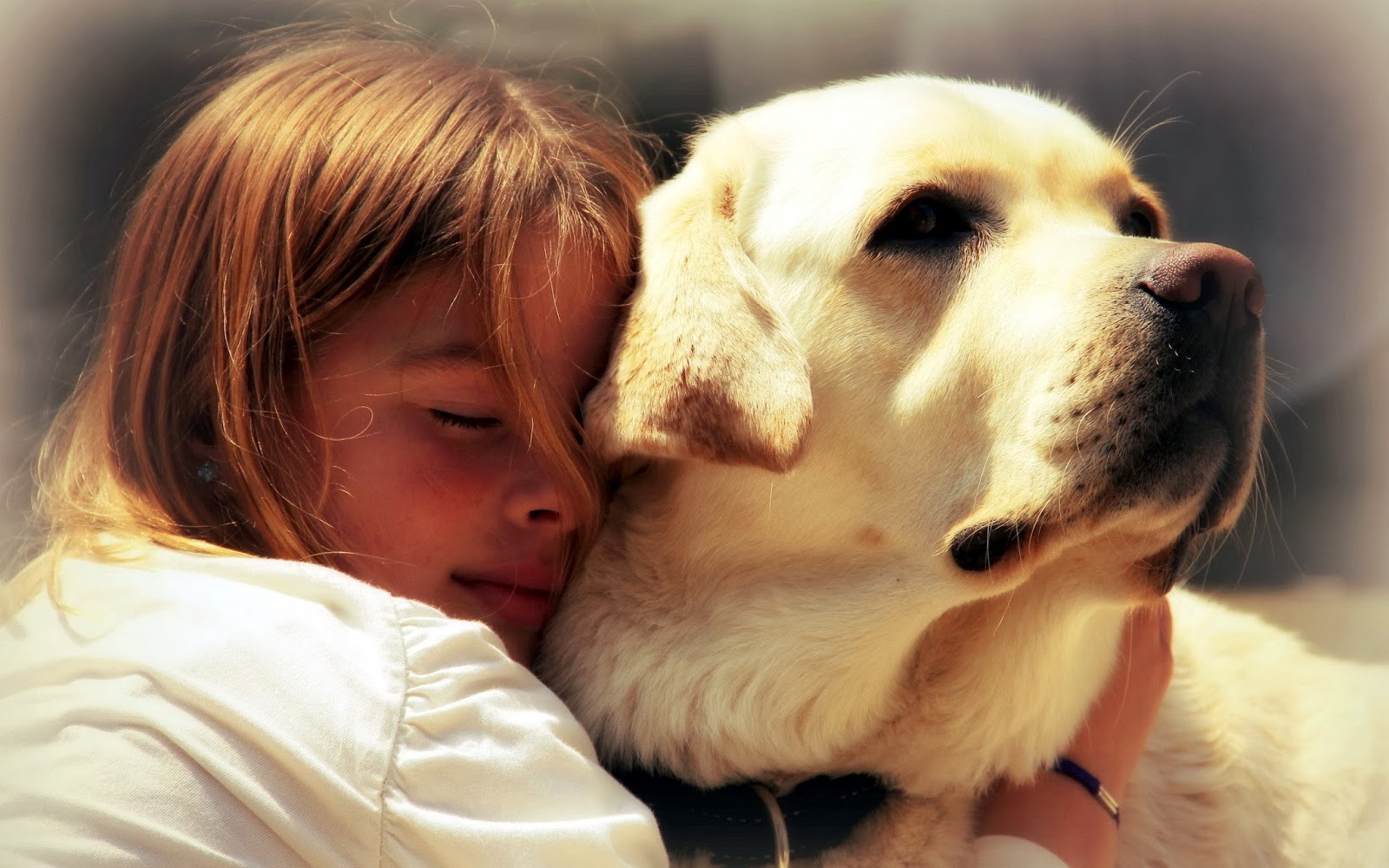 13250619-lovely-little-girl-hugging-pet-dog-with-passion-eyes-closed