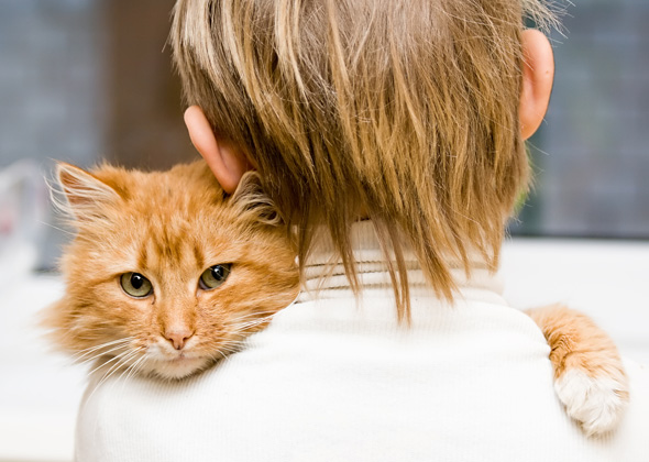 Cat-Cheek-rubbing-you-Thinkstock-145158641-590lc103112