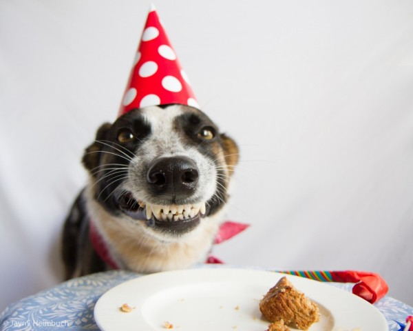 I'll smile for the camera ONE more time but then you let me finish my cake.
