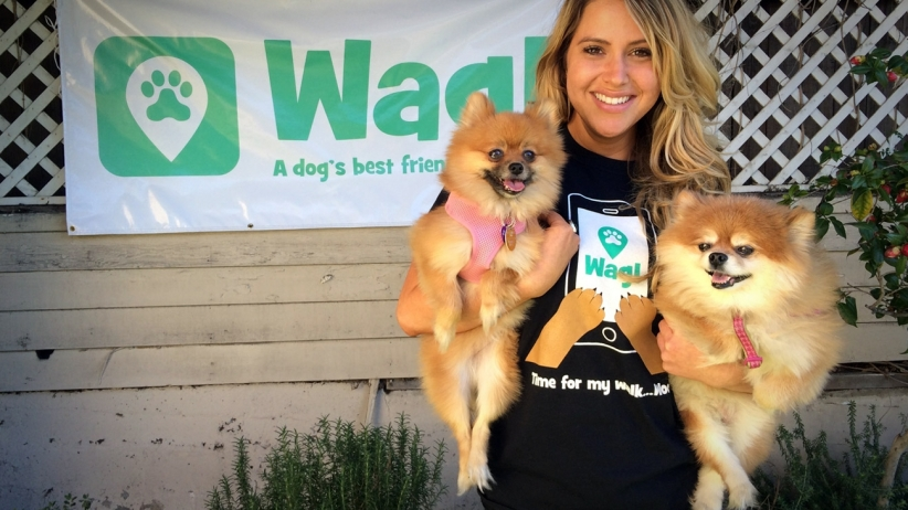 Wag! offers you the peace of mind you want for your pooch.