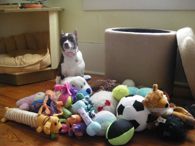 3. I Don't Have Enough Toys: A box full of toys, and new ones every week, but still there's just not any toys to play with.