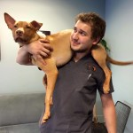 Emmy with her new dad vet technician Anthony.
