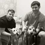 Max and Remi and their foster humans
