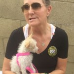 Founder of Thank Dog I am, Susan Patterson.