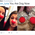 """FOLLOW me and send a pic of yourself or your squad, I make you dog,"" reads the Twitter bio."
