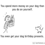 11-ways-to-tell-if-youre-a-crazy-dog-parent-6__880
