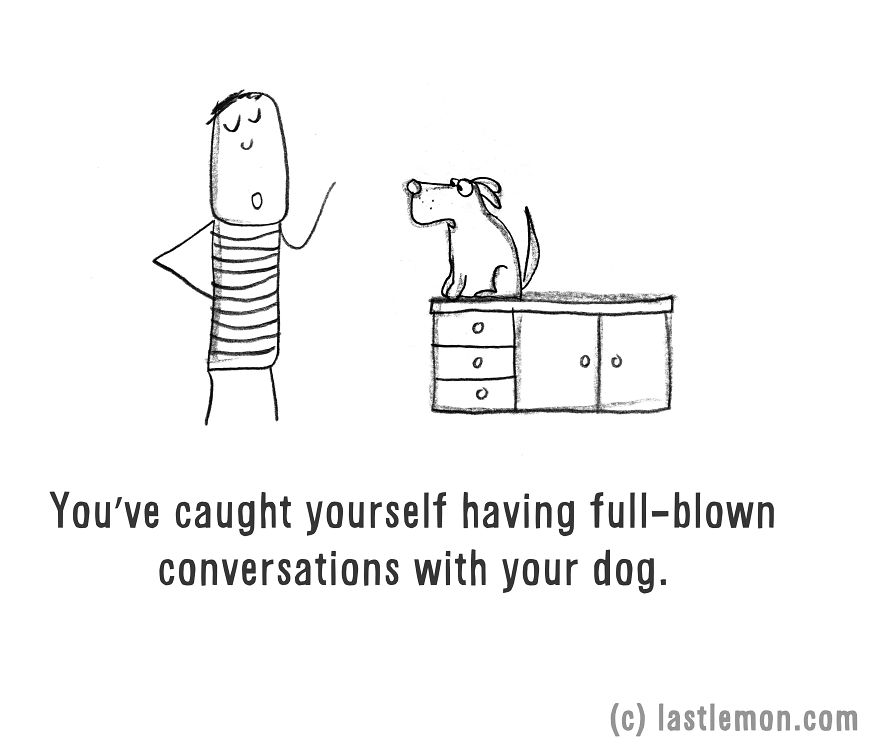11-ways-to-tell-if-youre-a-crazy-dog-parent__880