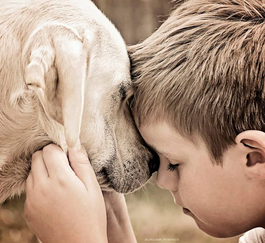 Heartwarming-photos-of-my-son-and-our-rescued-dogs15__880