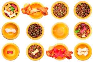 pet-food-ingredients-china