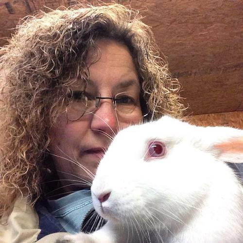 Bonsai, the lucky bunny to also be rescued!