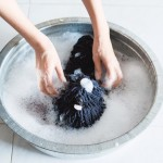 And when your pooch gets tired of doing the cleaning, he can detach from the mop for a well-deserved break.