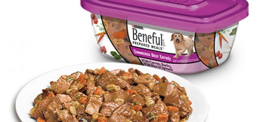 Types Of Beneful Dog Food