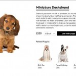 Lyst designer dog breed stunt