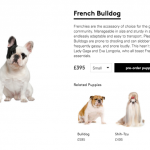 Lyst designer dog breed