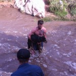 Dog saved from Mill Creek