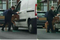 Teenager saves dog from van