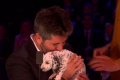 Simon Cowell puppies