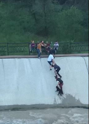 Human Chain Formed  To Save the Life of Dog Trapped In Reservoir