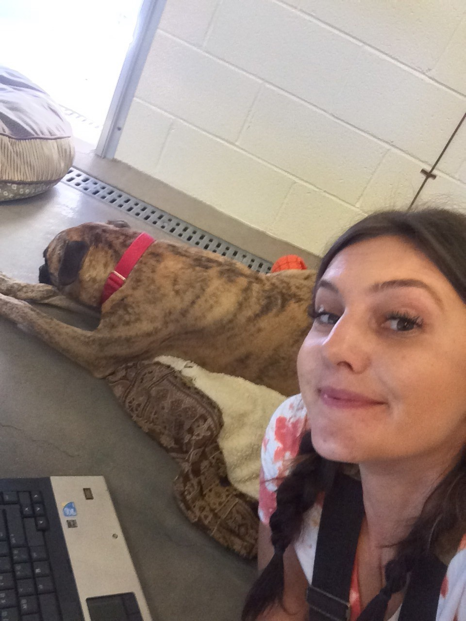 Shelter worker with dog at kennel