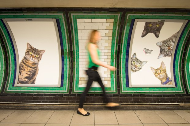 CATS Clapham Common train station