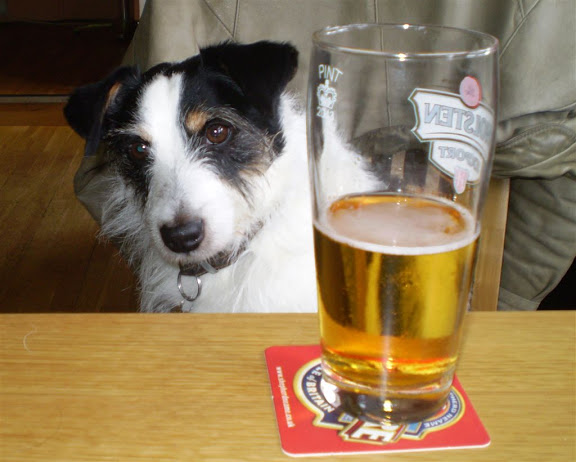 beer-for-dogs