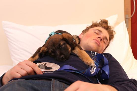 gus kenworthy with puppy