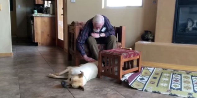 man with Alzheimer's disease talks to dog