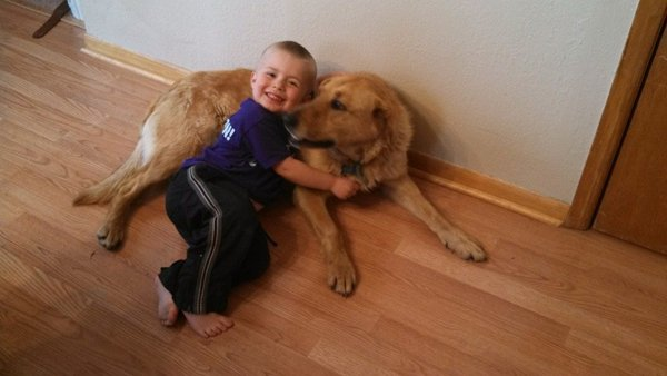 Dog protects lost 3-year-old