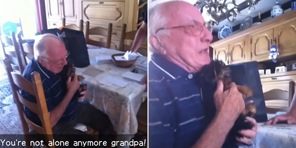 grandpa gets new puppy