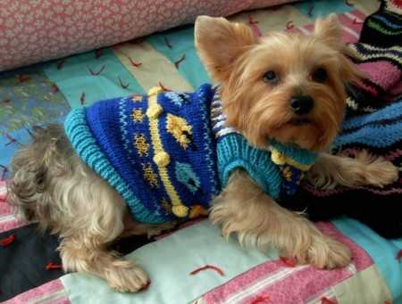 ugly-hanukkah-dog-sweater-450x341