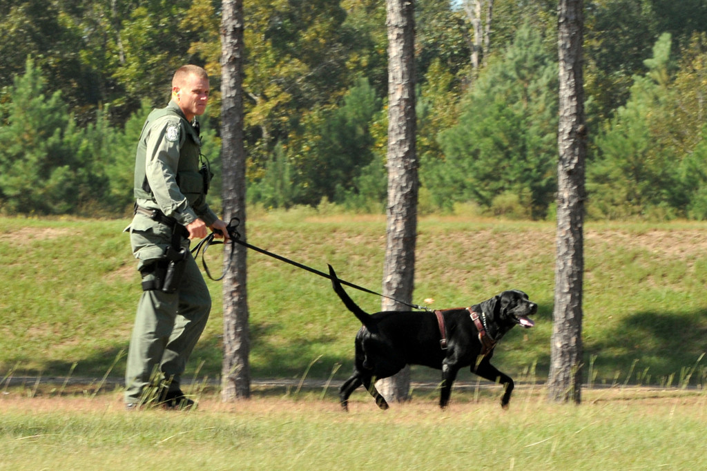 outdoorhub-wildlife-officials-train-fish-sniffing-dogs-as-secret-weapon-against-poachers-2015-04-23_17-18-26