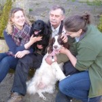 Ruby and Skye the stolen spaniels are returned safely