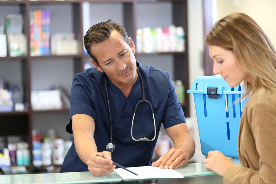 Veterinarian giving medical prescription to client
