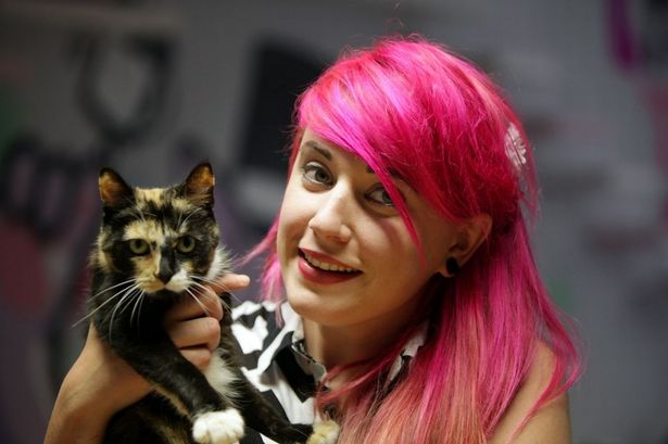 Cat And Dog Cafe Newcastle