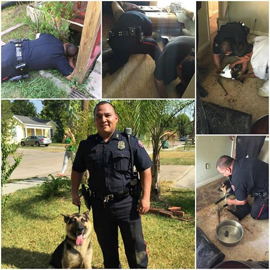 You Won't Believe How These Police Officers Rescued A Dog