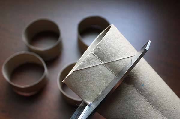 7 simple cat toys that you can make with empty toilet paper rolls 7rings solutioingenieria Images