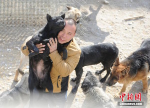 changchun_dog_lover13