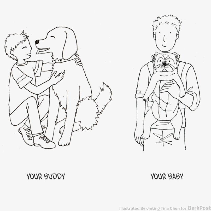 these illustrations show that there are two types of dog