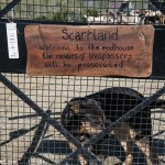 Le Sanctuaire de la Faune de Tanger –The Wild Animal Sanctuary of Tangier
