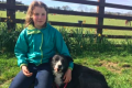 Sheepdog travels 240 miles home