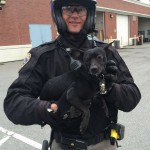 Officer with Chihuahua he captured