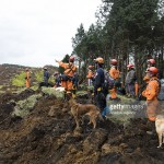 Japan rescue dog earthquake