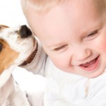 Dog licking baby | 3MillionDogs