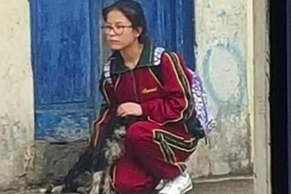 School protects dog from rain Peru