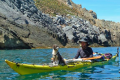 Man and dog kayak adventure