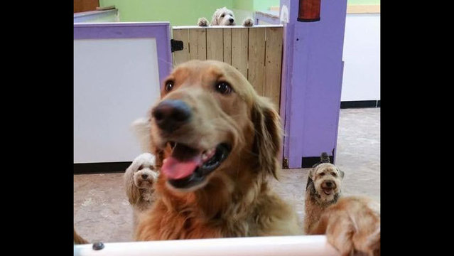 Riley at day care